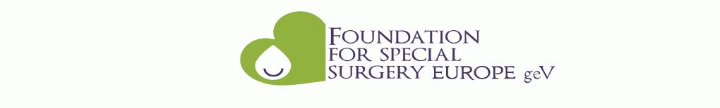 Logo von FFSSE.